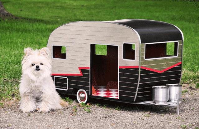Design Milk Vansage Campervan life with dogs